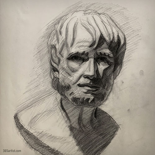 bust drawing