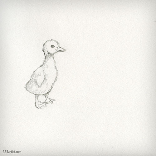 drawing of a duckling