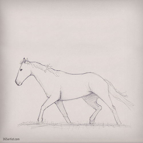 pen drawing of a mustang horse