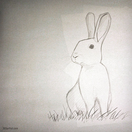 drawing of a rabbit